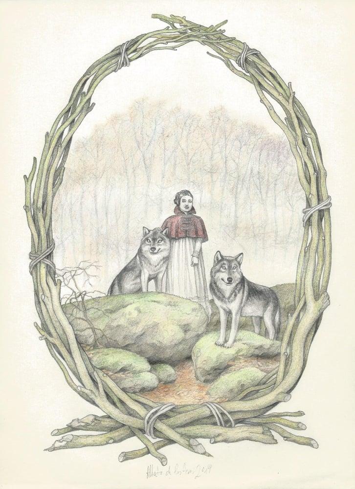 Image of ANIMAL serie Mrs.Wolf