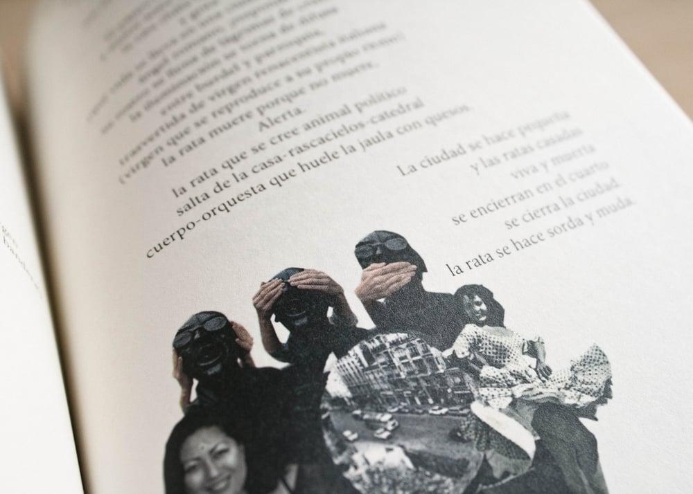 Image of La revolución de las ratas / Francisco Godoy Vega