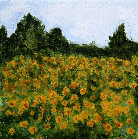 Image of Tuscan Sunflowers