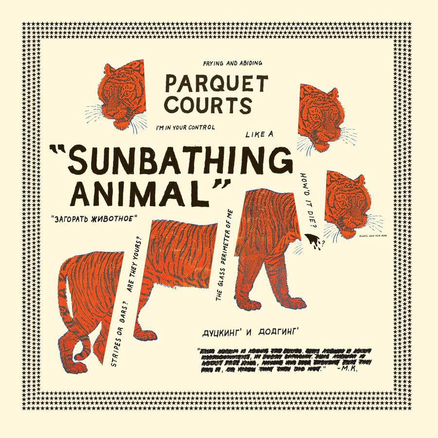 Whats Your Rupture Parquet Courts Sunbathing Animal Lp
