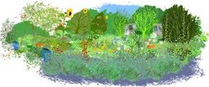 Image of Annie's Allotment