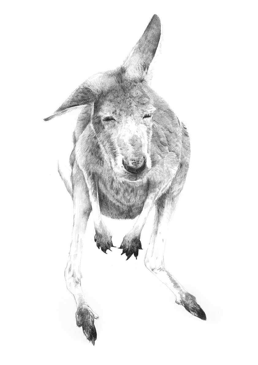 Image of 'GREY 1' Limited Edition Print