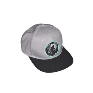 Image of Grey Snapback