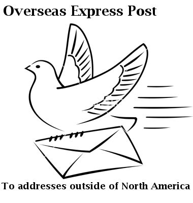 Image of Overseas Express Shipping Upgrade