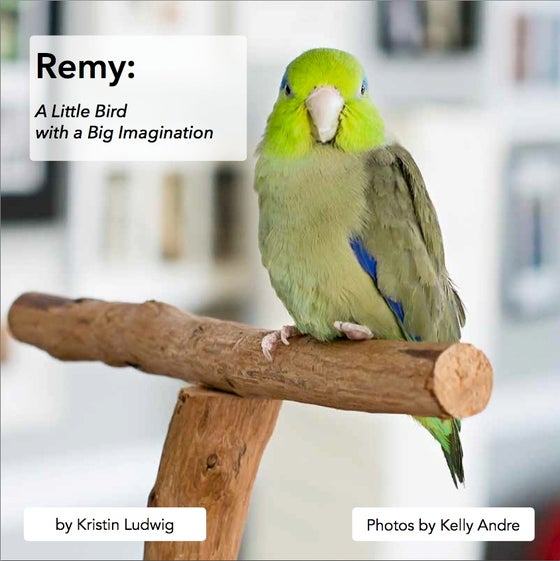 Image of Remy: A Little Bird with a Big Imagination
