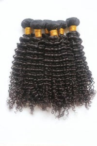 Image of Eurasian Curly