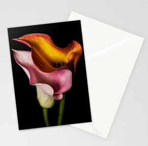 Image of Cala Lilies Petal Card