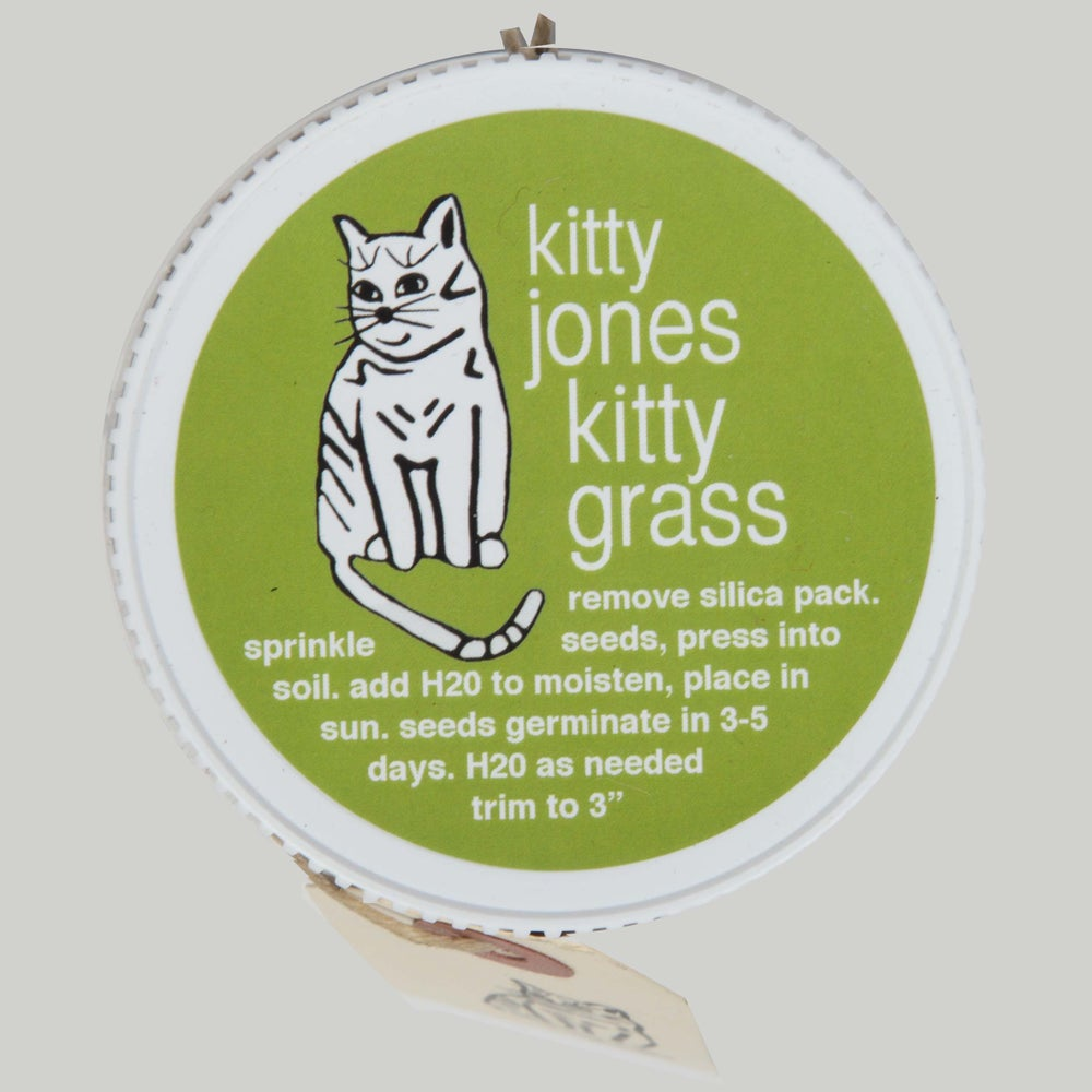 Image of kitty grass kit