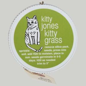 Image of kitty grass kit