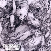 "Image of 1er Album ""Crossing The Rubicon"""