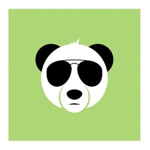 Image of Panda Eyes