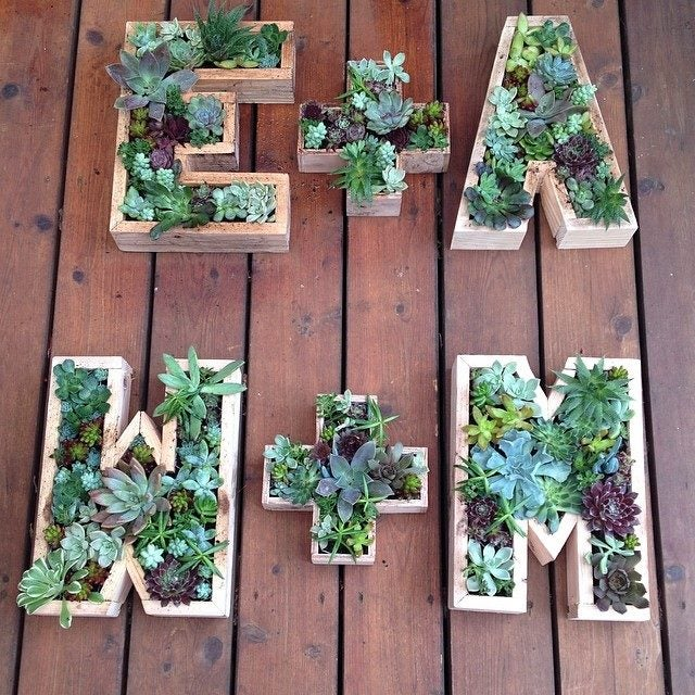 Image of SUCCULENT MONOGRAM WORKSHOP