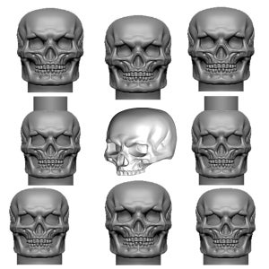 Image of SET of SKULLS! Now Available