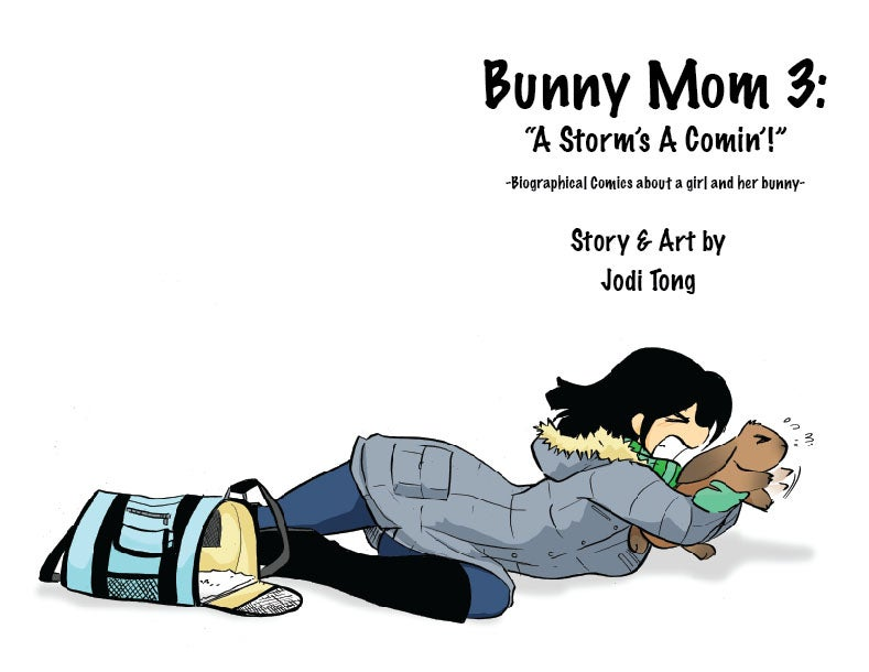 Image of Bunny Mom Issue 3: A Storm's A Comin'!