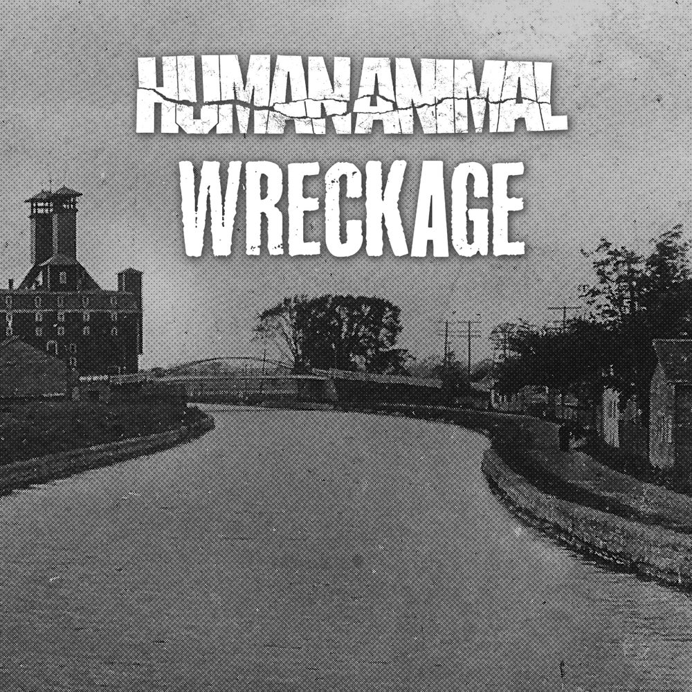 Image of Human Animal / Wreckage - Split 7""