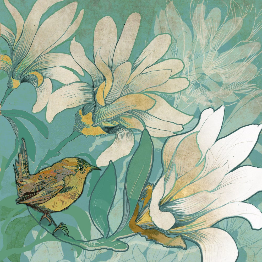 Image of Wren with Magnolia
