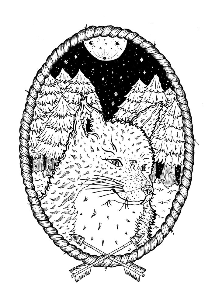 Image of 'Fox in the woods'