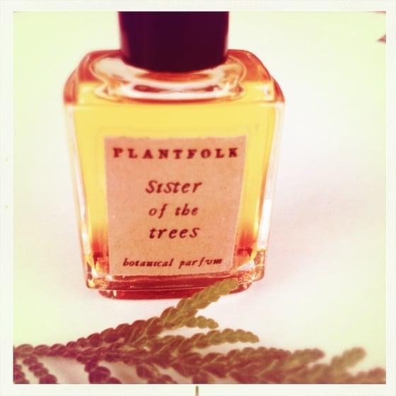 Image of sister of the trees bioregional botanical parfum