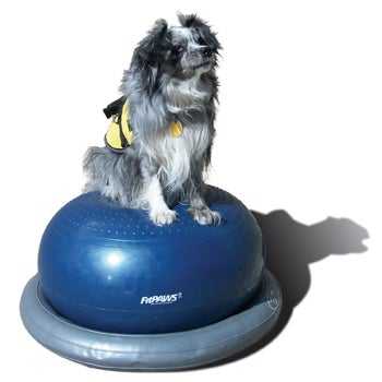 Image of FitPAWS® Circular Product Holder Gray