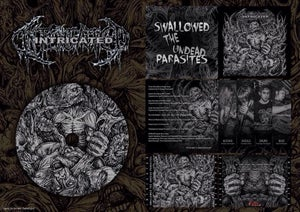 Image of Intricated - Swallowed the Undead Parasites - Single CD