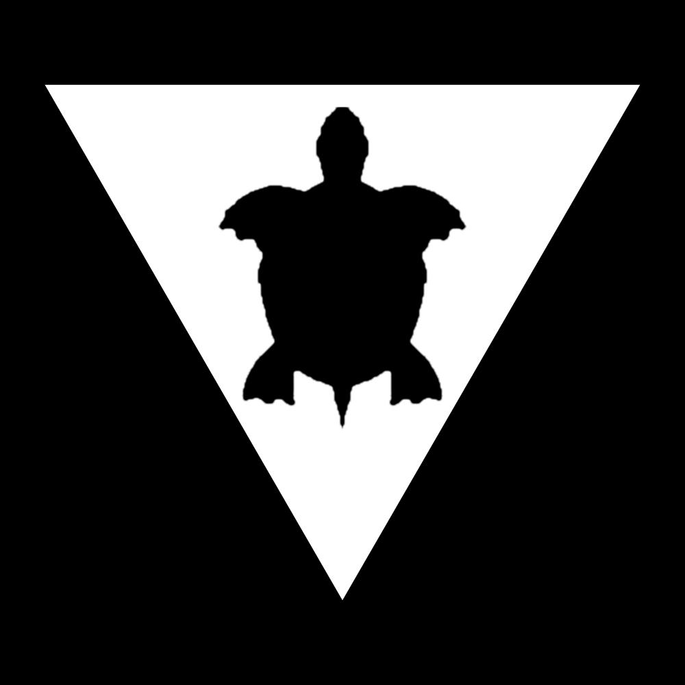 Image of Turtle Hoodie