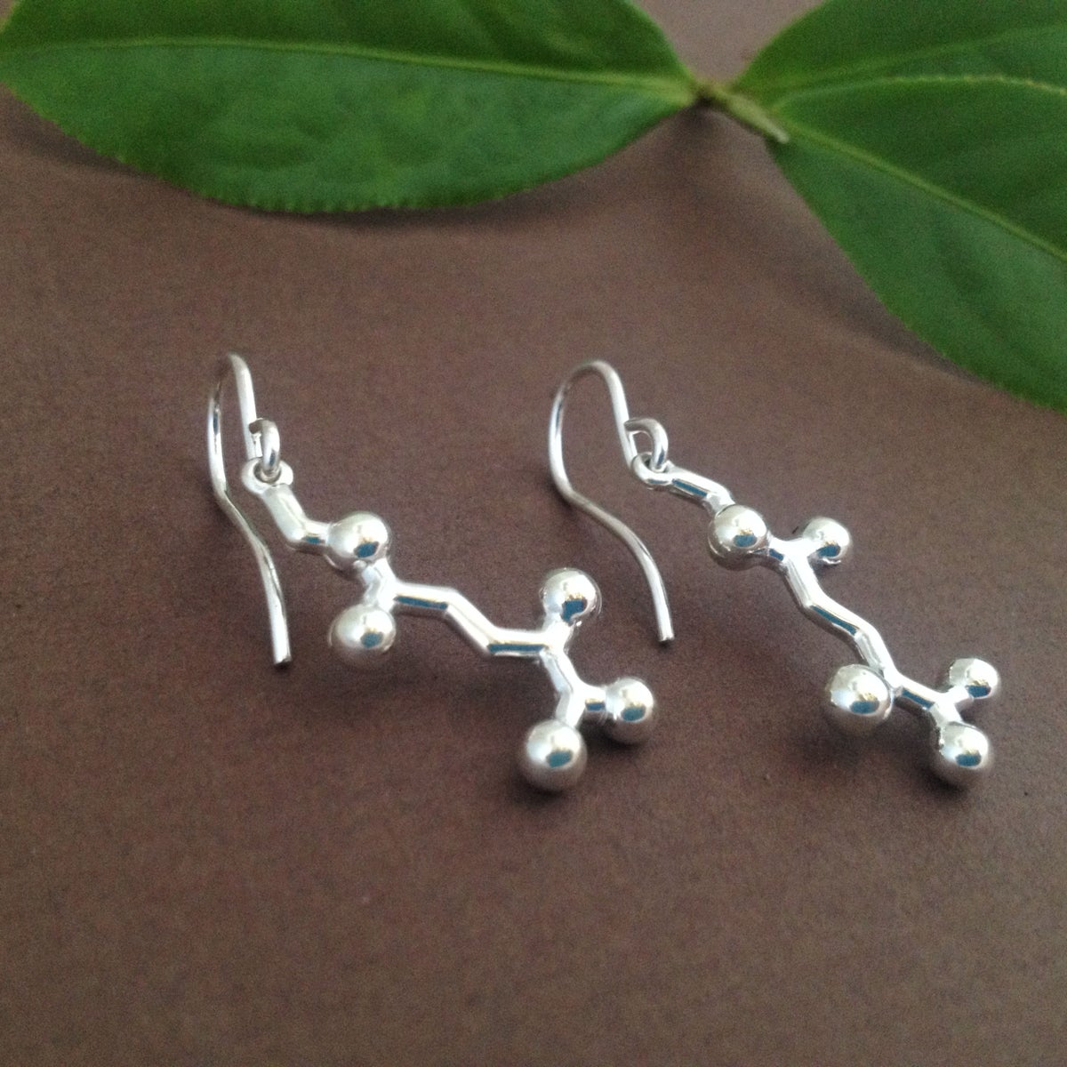 Image of theanine earrings
