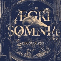 Image of Direwolves - Aegri Somnia LP