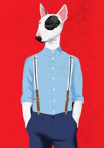 Image of Skinhead Bull Terrier