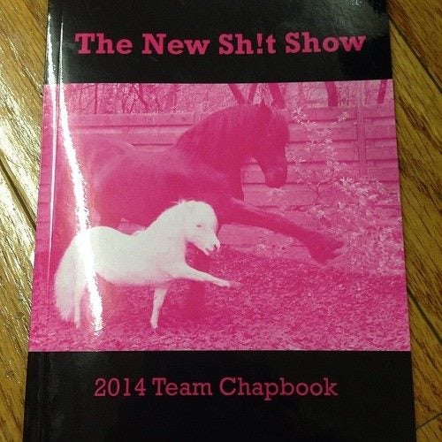 Image of New Sh!t Show 2014 Team Chapbook