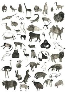 Image of Bunch o' Animals