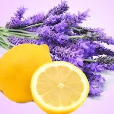 Image of Lemon Lavender