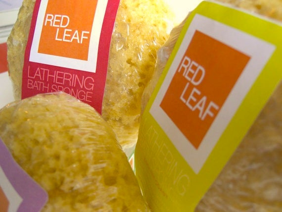 Image of Free Shipping Red Leaf Lathering Bath Sponge Drenched With Glycerin Soap