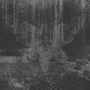 Image of Plagiarised Hope 7'' EP