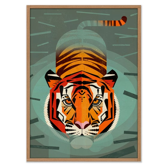 Image of Swimming Tiger