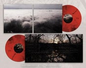 "Image of COLARIS ""renewal"" CD"