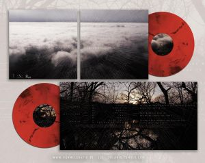 "Image of COLARIS ""renewal"" 2xLP or CD"