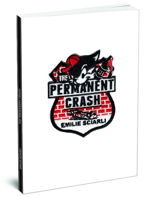 Image of The Permanent Crash