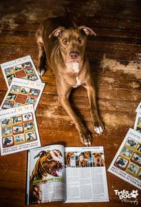 Image of Pawtographed American Dog Magazine
