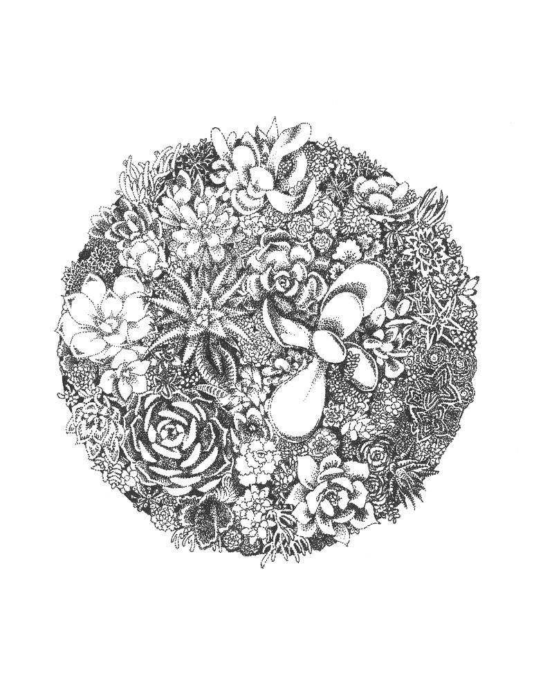 Image of Succulent Garden Print