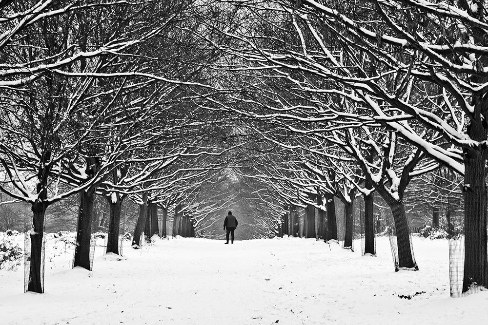 Image of Walking in the snow