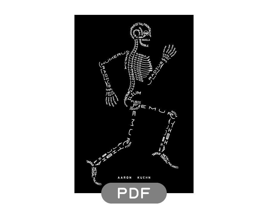 Image of Skeleton Typogram - PDF on black