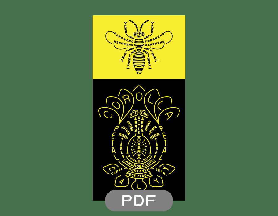 Image of Pollinator Typogram - PDF