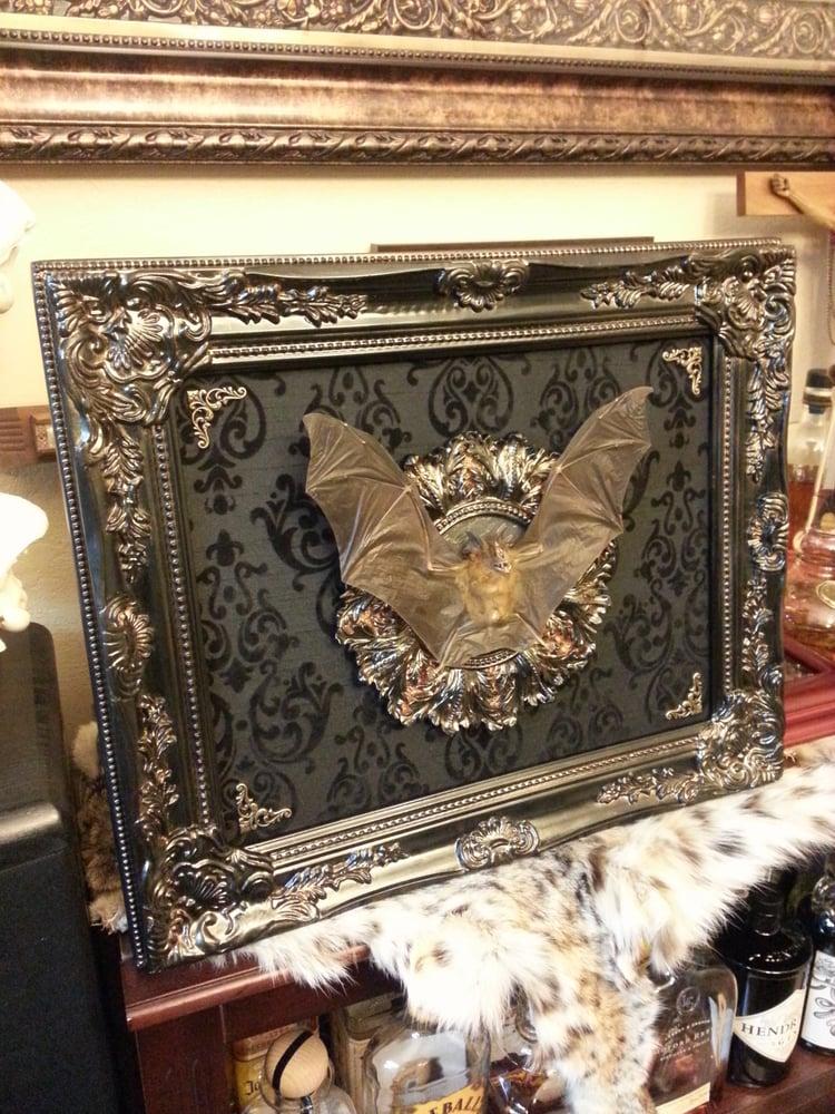 Image of 18x15 open mount bat display custom order