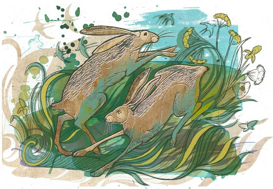 Image of Hares Heyday
