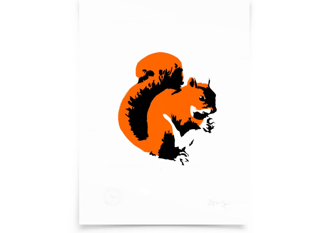 Image of Squirrel on paper - Screenprint
