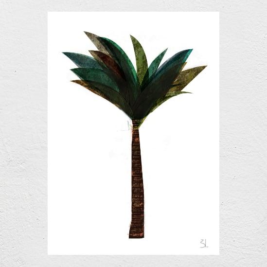 Image of Palm Tree Print
