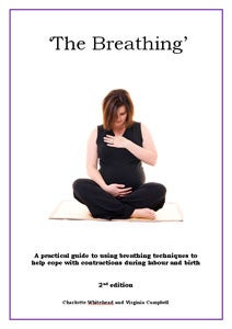 Image of The Breathing Book