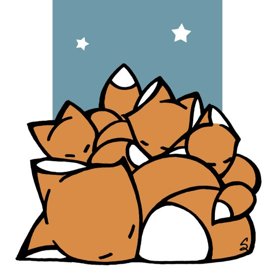 Image of Sleeping Foxes
