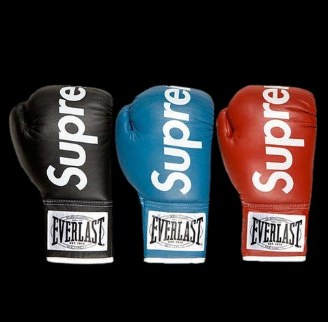 Image of 2008 Everlast Boxing Gloves