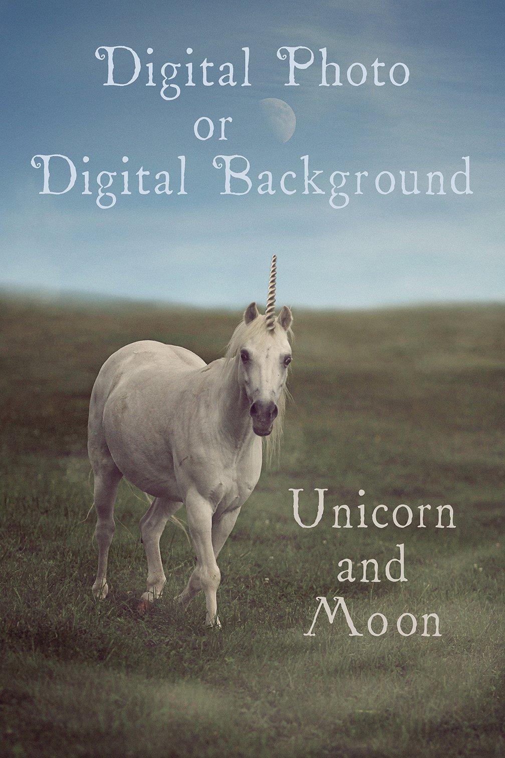 Image of Unicorn and Moon Digital Background